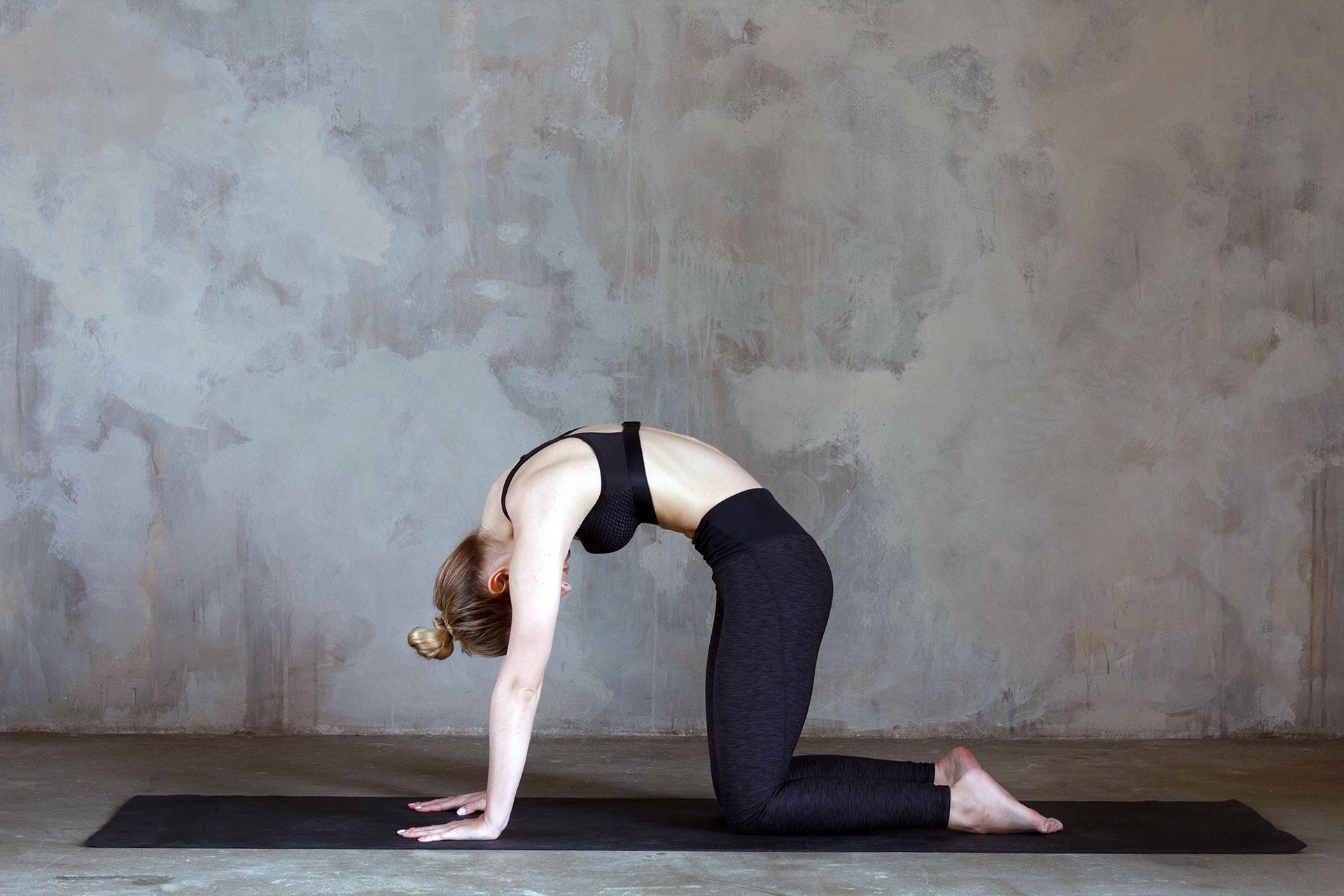 Frau in der Yoga Position Katze